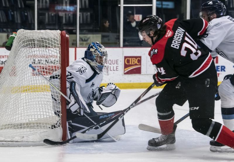 QMJHL: the 2nd wave of COVID-19 slows the return of foreign players